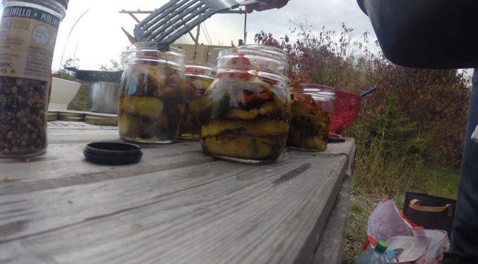 Création de conserves en bocaux